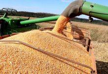 Foto de Mato Grosso do Sul bate recorde e chegou a 13,305 milhões de toneladas colhidas de soja 2020/21