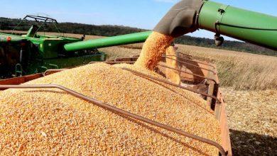 Foto de Brasil: Exportações de bens totalizaram recorde histórico de US$ 3,84 bilhões em maio
