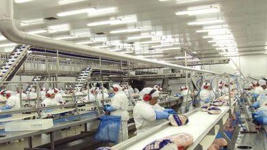 Foto de Economia de Mato Grosso do Sul possui PIB industrial de R$ 21,4 bilhões, aponta CNI
