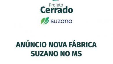 """Foto de """"Projeto Cerrado"""" Nova fabrica da Suzano será anunciada hoje em Ribas do Rio Pardo"""