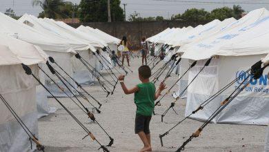 Foto de Refugiados no Brasil veem futuro por meio de educação, saúde e esporte