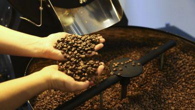 Foto de Consumo mundial de café atinge volume de 167,58 milhões de sacas