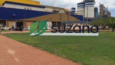 Foto de Suzano abre processos seletivos com 3 vagas para Ribas do Rio Pardo e Três Lagoas